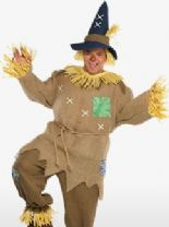 Mr Scarecrow Costume